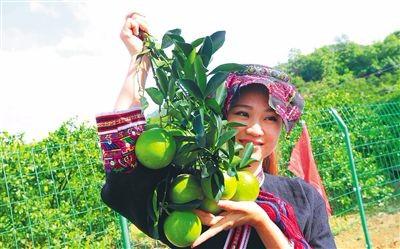 琼中:特色+绿色 奏响海南中部发展新乐章
