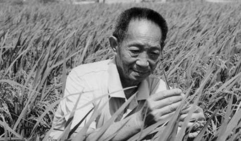 """""""杂交水稻之父""""袁隆平逝世  享年91岁"""