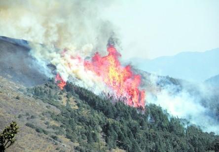 """四川凉山州森林火灾已得到控制 北京、山西等地森林火险等级""""极度危险"""""""