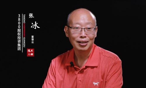 陈皮人物 张冰:海南自贸港的商机在哪?