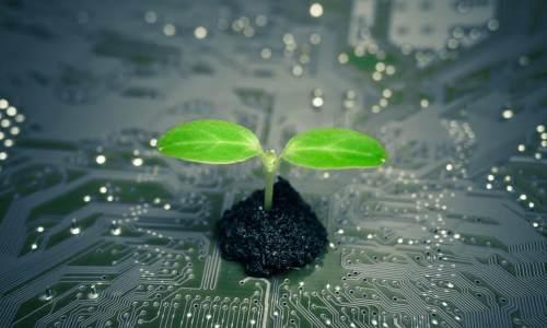 全国首个绿色技术交易中心揭牌  壮大绿色技术创新主体