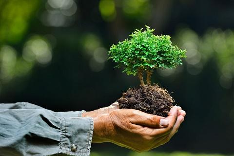 """绿色生产、绿色设计,建材行业是时候吹响""""环保""""的号角"""