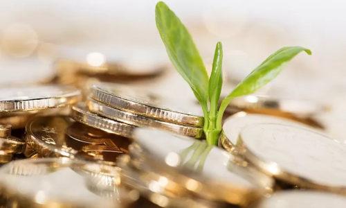 12条举措发力难点  新型农业经营主体迎来金融政策大礼包
