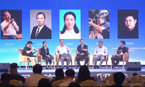 海南省广告论坛陈总讲话