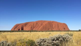 平时见不到的动物,这里都有!动物百科全书——澳大利亚