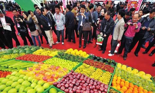海南举行品牌农产品推介 达成意向订单7800万