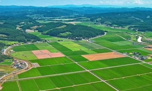 今年如何建成1亿亩高标准农田?标准高在哪儿?资金从哪儿来?