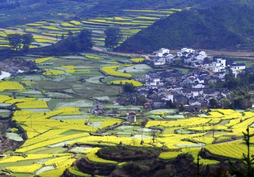 解读江西省委一号文件:在全面推进乡村振兴上走前列