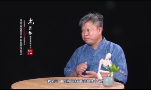 陈皮人物 龙秀林,一个精准扶贫的创新队长