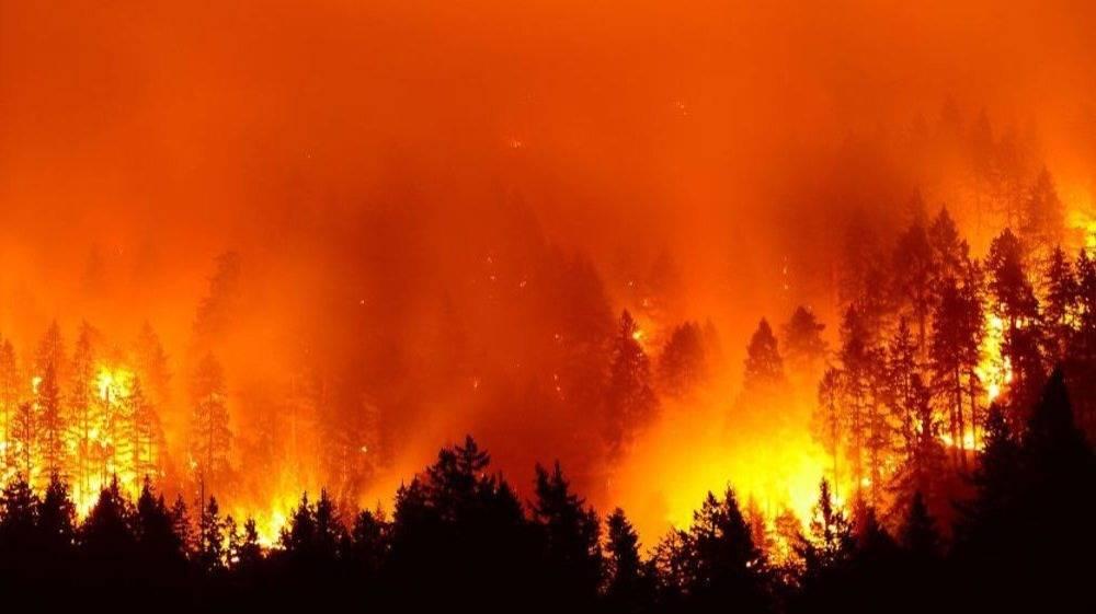 拿33年前大兴安岭特大火灾出来吹嘘,不合适