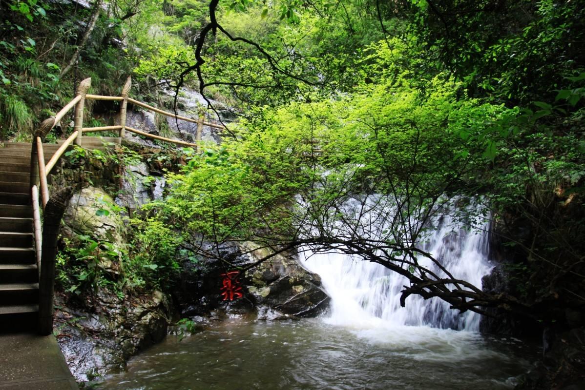 资源保护与林农增收同进,赣州市森林旅游迈向高质量发展