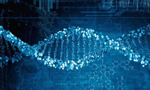 快速组装全基因组在个人电脑实现