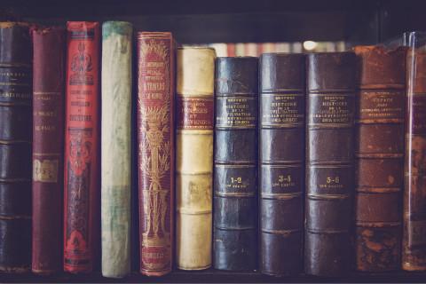 不只有网络文学,经典文学影视版权亟待开发