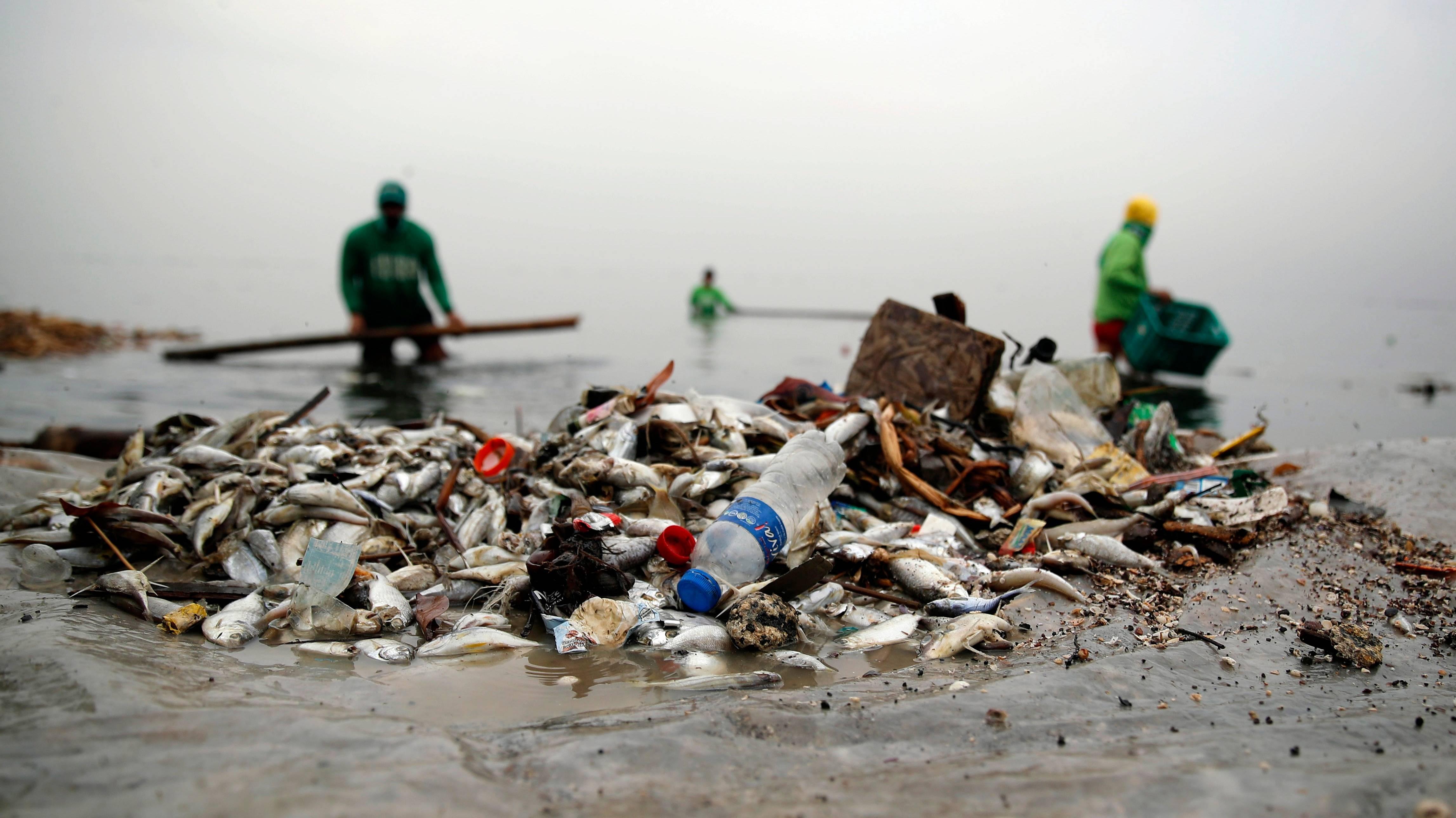 人类灭亡的时候,塑料依然沉睡在海底
