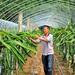 """收费教农民种田:""""职业农民""""教育,会是下一个千亿大风口吗"""