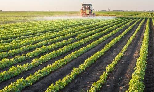 六部门联合发文:做好新型农业经营主体金融服务