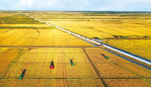 """农业农村部发布全国乡村产业高质量发展""""十大典型"""""""