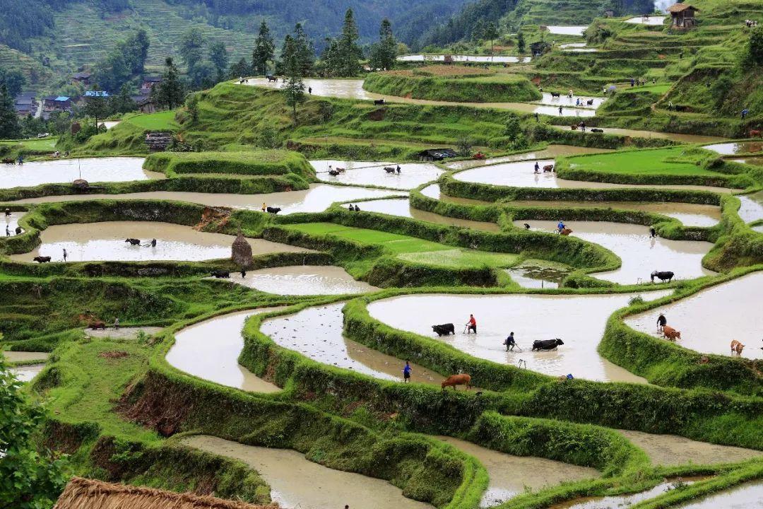 江西省开展美丽乡镇建设五年行动
