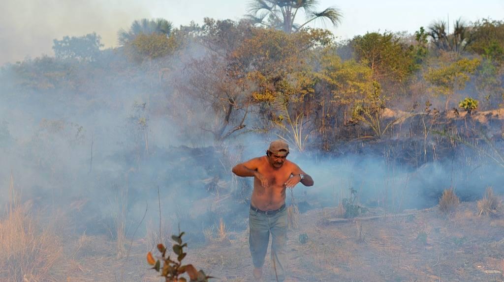 亚马逊雨林在燃烧,巴西人在烧烤