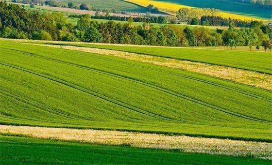 农业农村部力推产地准出与市场准入联动 农产品合格证制度加快落地
