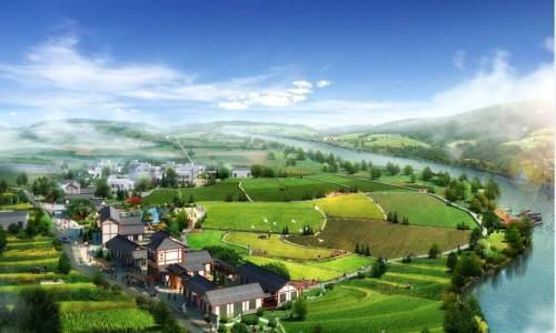 """特色产业在乡村""""生长""""   成为乡村振兴重要动能"""