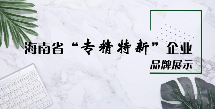 """海南省""""专精特新""""企业展示"""
